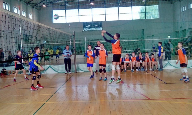 Wojewódzki finał turnieju Kinder + Sport